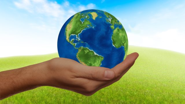 eco-kids-www-grafika
