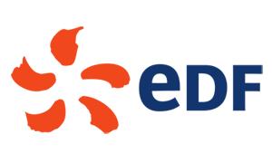 EDF Polska Sponsor Diamentowy